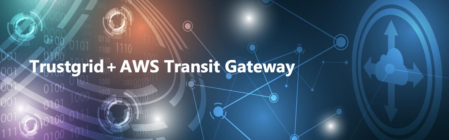 Trustgrid + AWS Transit Gateway SB Image