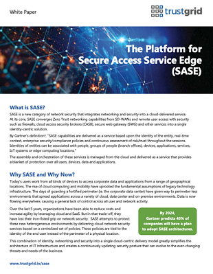 The Platform for SASE